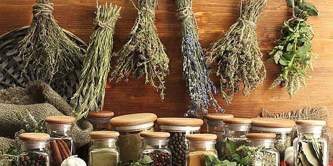 Halkidiki Herbs